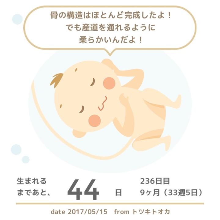 張り 切迫早産