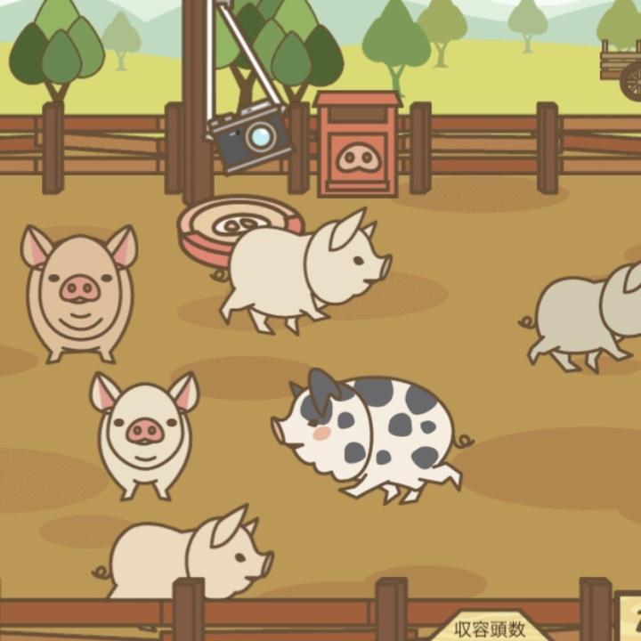 伝説 級 場 ミックス 養豚